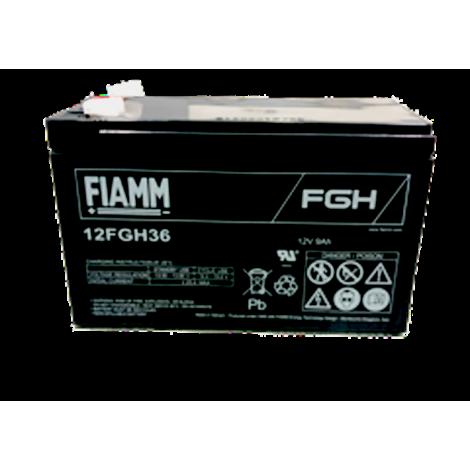 FIAMM12fgh36